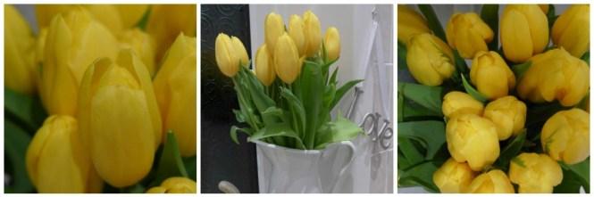 Serenata flowers tulips