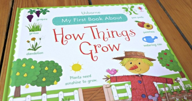 usborne how things grow