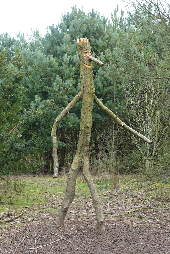 Searching For the Stickman at Delamere