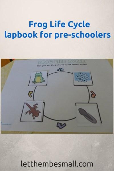 frog life cycle lapbook