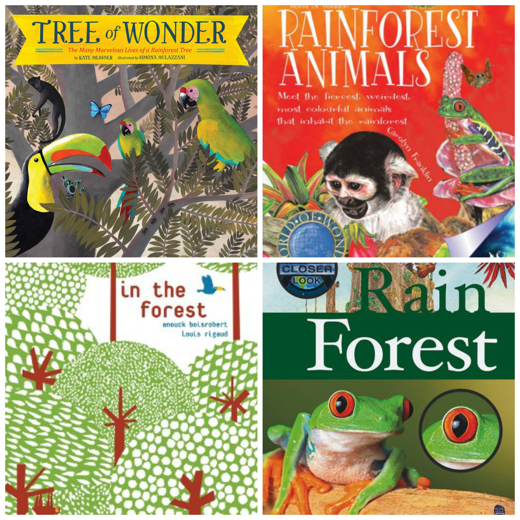 Rainforest Amp Jungle Books For Preschoolers