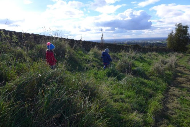 werneth low country park