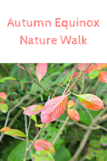 autumn equinox nature walk