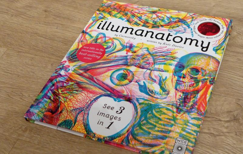 illumanatomy review