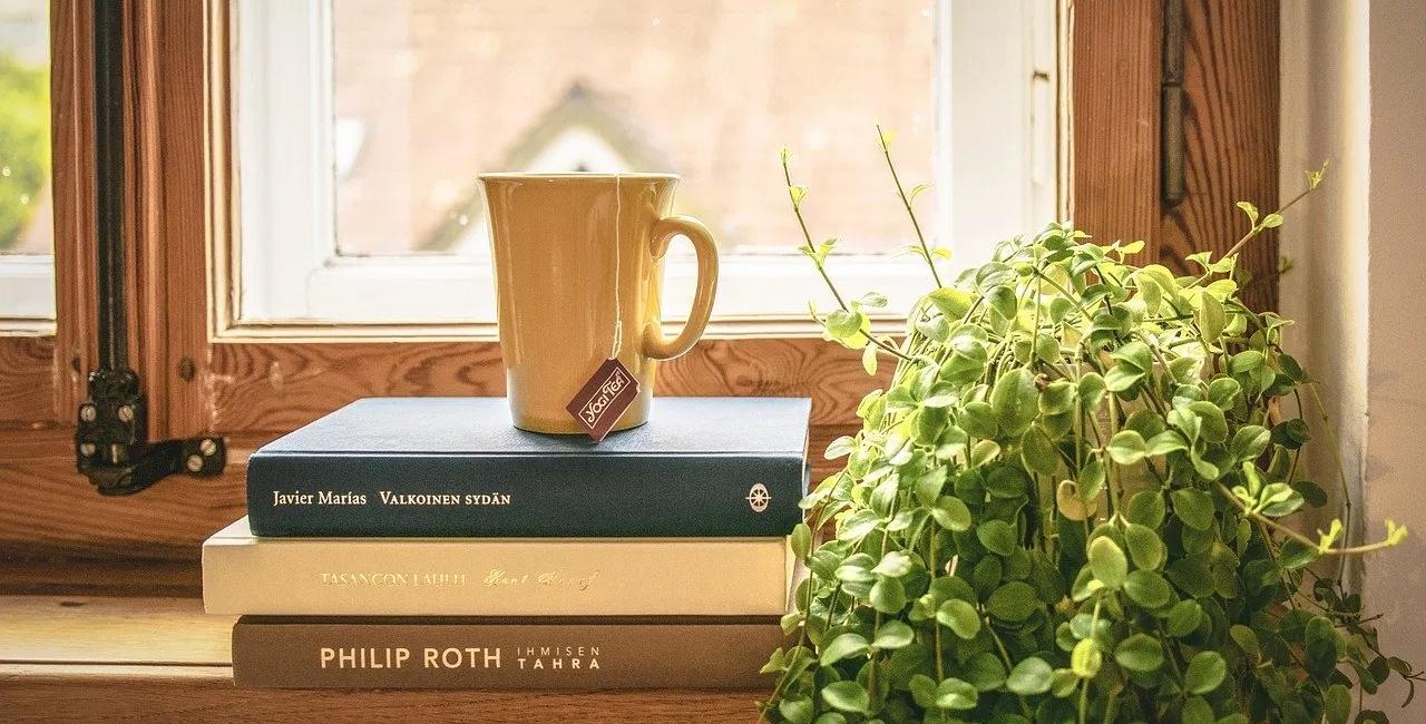 libri impilati l'uno sopra l'altro con una tazza davanti a una finestra