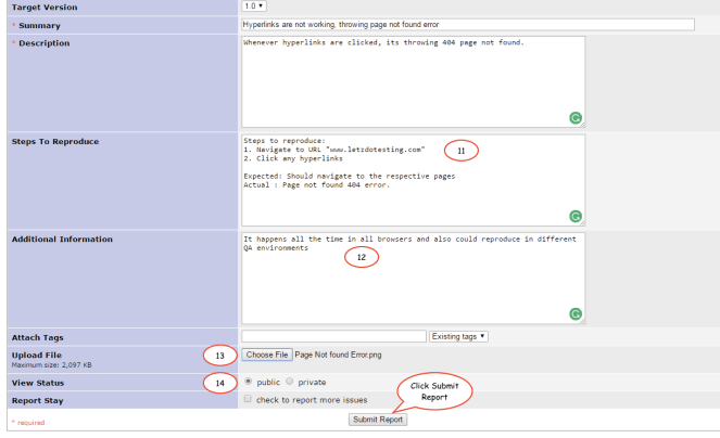 enter-bug-details