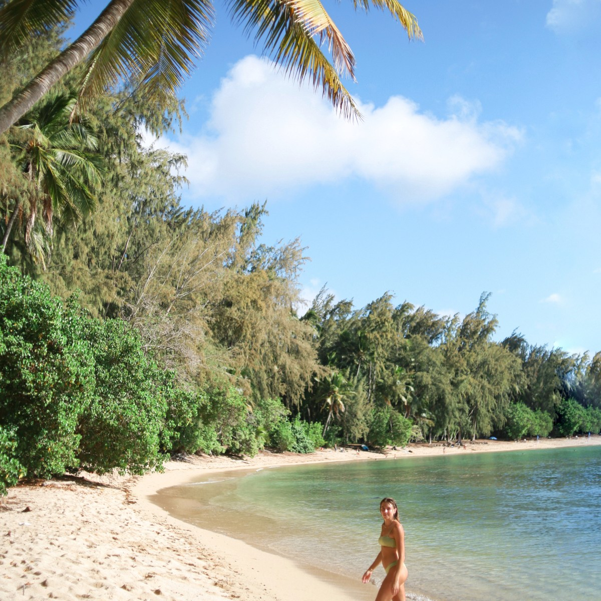 Beach Day North Shore Hawaii - Travel Guide
