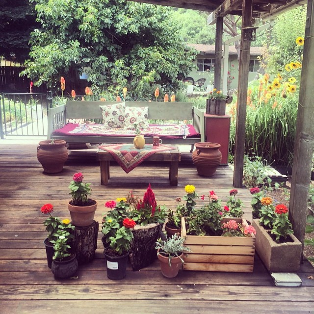 Day bed and tea pot as a planter. #pinole #pinolehome #naturedesign
