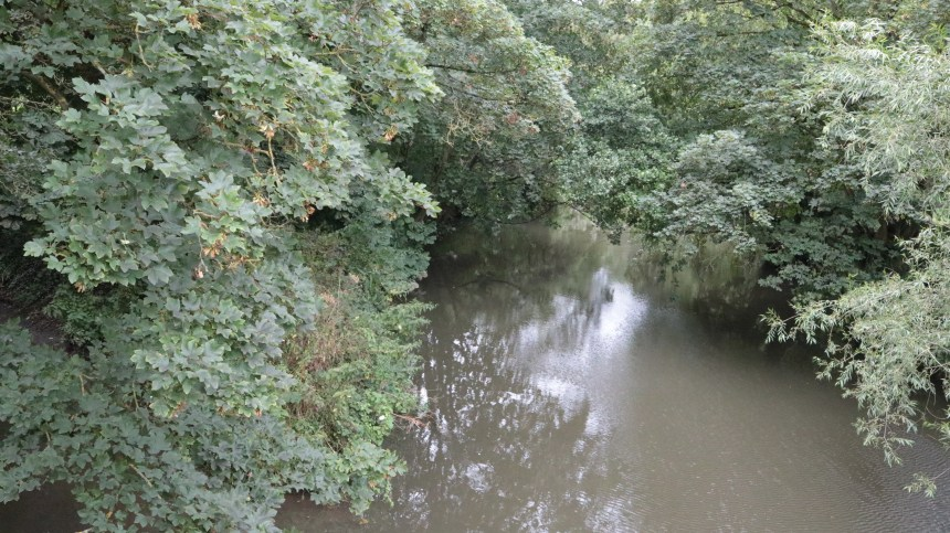 River Frome (2)