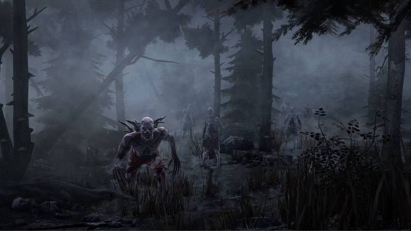 Misty-Forest-hellraid