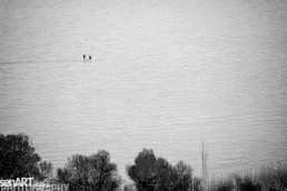 2016yds_sen7002 © LEVENT ŞEN