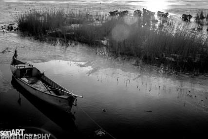 2017yds_sen_7851© LEVENT ŞEN