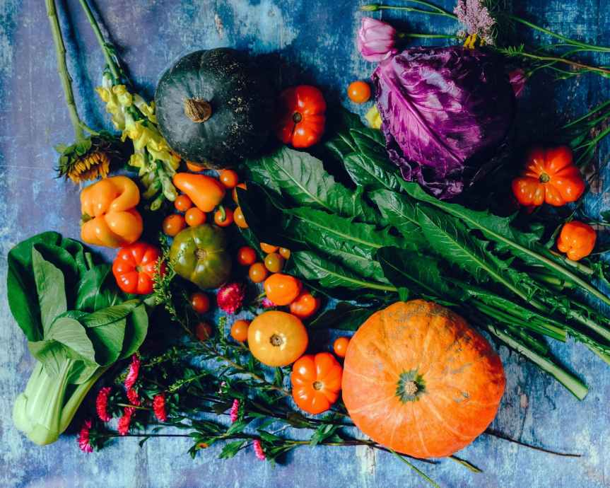 10 Vegetables To Plant in October