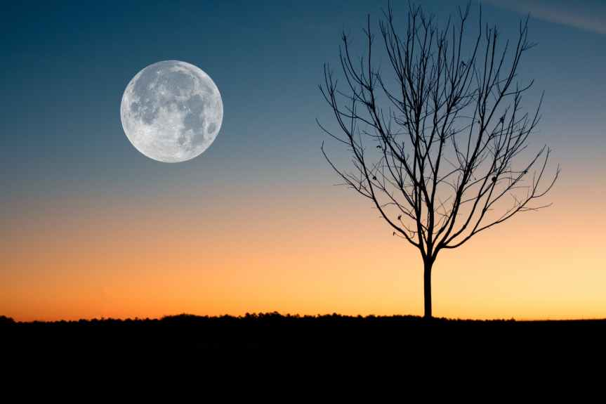 The Meaning of the Full Worm Moon this March | Leverage Ambition