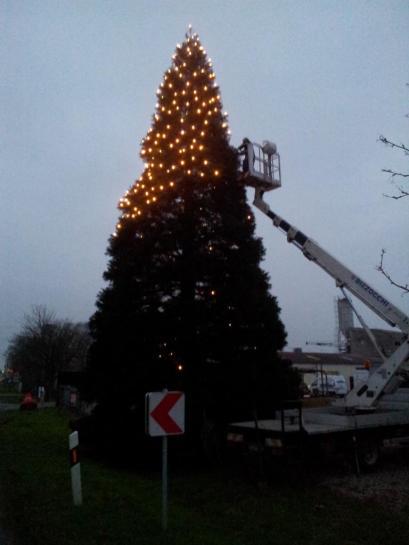 Weihnachtsbaum-Schiffswerft-2014-07