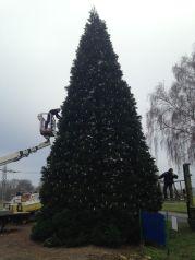 Weihnachtsbaum-Schiffswerft-2014-10