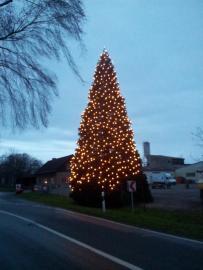 Weihnachtsbaum-Schiffswerft-2014-15