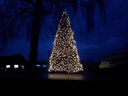 Weihnachtsbaum-Schiffswerft-2014-19