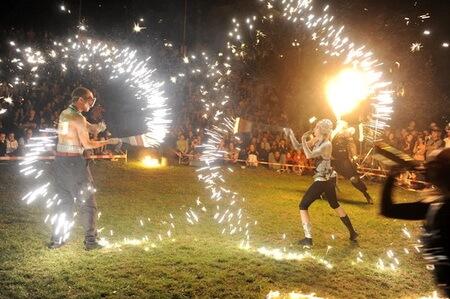 circ festival letni letna
