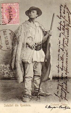 Badea Cârțan. Sursa foto Biblioteca din Aleșd