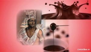 ciocolata delicias regibus pusa roth