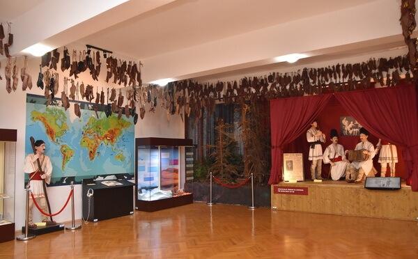 Expoziția Dumitru Dan, Muzeul Județean Buzău