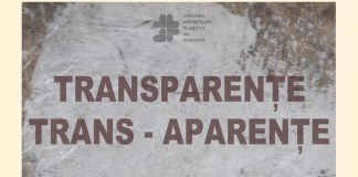 Afis Transparente Trans-aparenta 2019 (1)