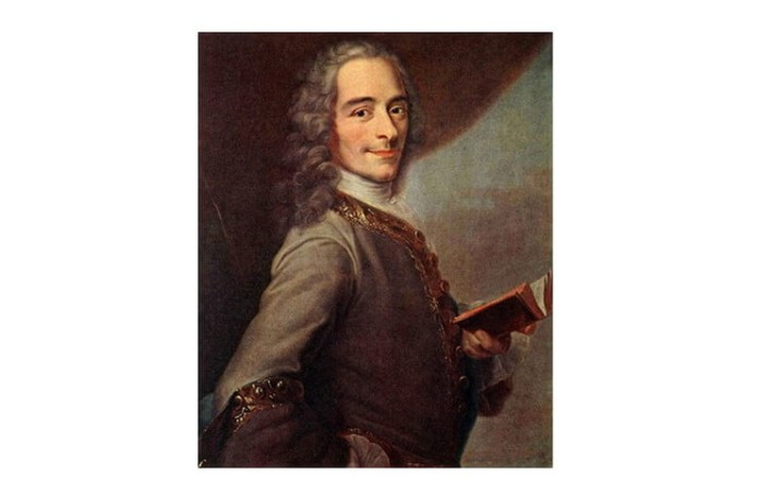 Maurice Quentin de la Tour, Voltaire, 1735