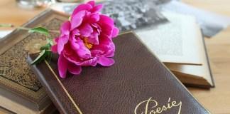 premii literare poezie