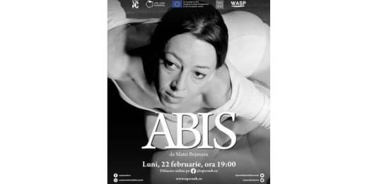Documentar Irinel Liciu - Afis