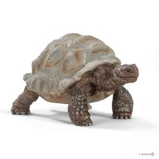 Giant Tortoise (Schleich 14824) | LeVida Toys