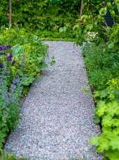 Grusgång och plantering grönt, lime och violett.
