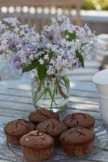Chokladmuffins med mjölkchoklad.