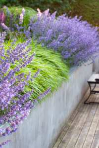 Plantering designad av trädgårdsdesigner Ulrika Levin, Levins Trädgård & Design.