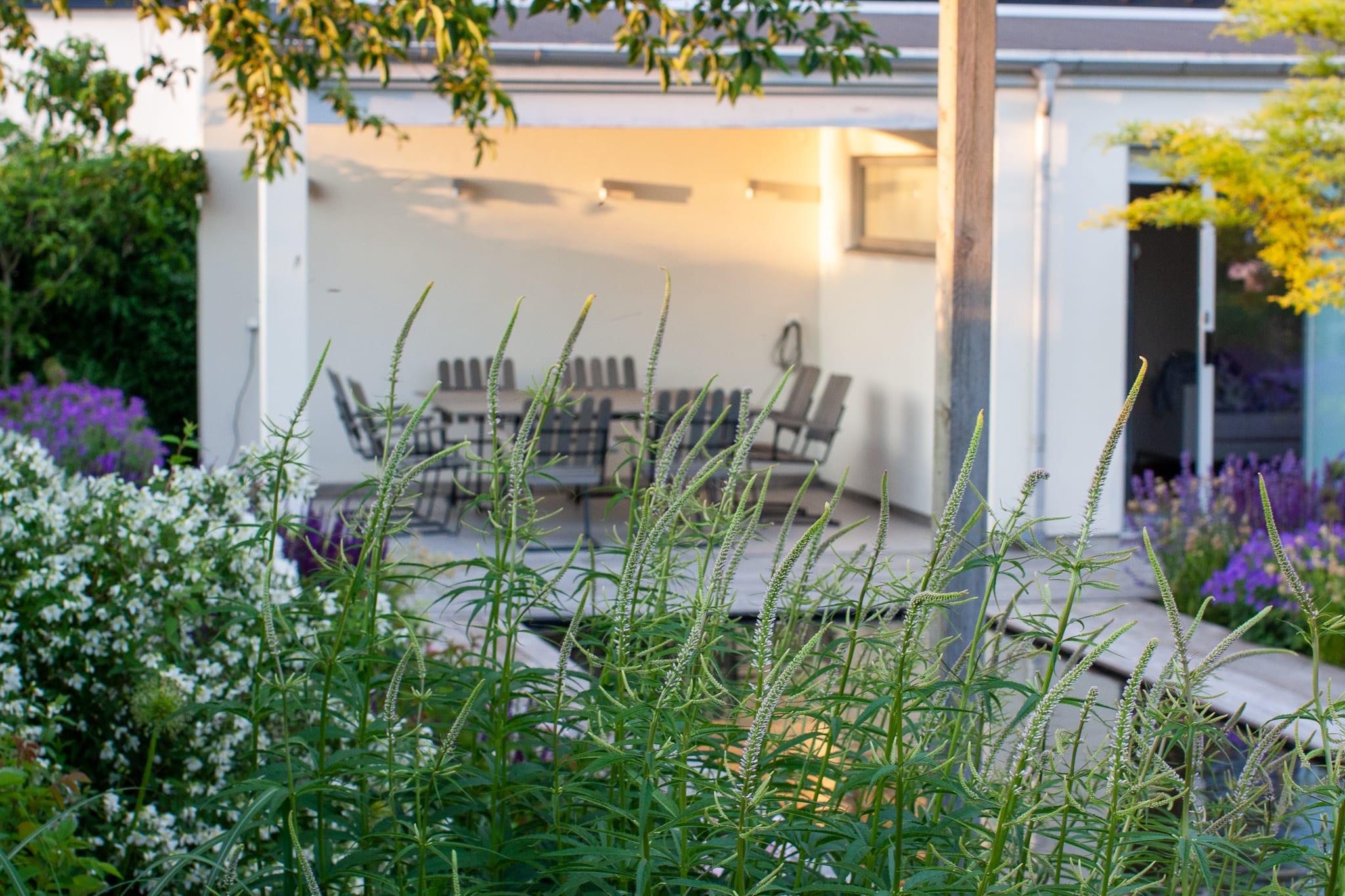 Trädgårdsdesign och arkitekttjänster, Levins Trädgård och Design.