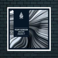 LV Premier - Felipe Gordon - Evolving Textures [Fluid Funk]