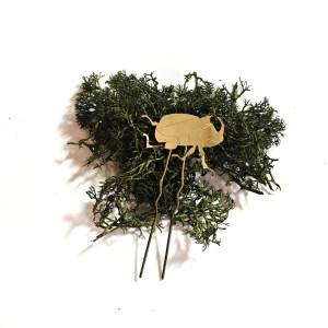 Fork Beetle-Le Voilà