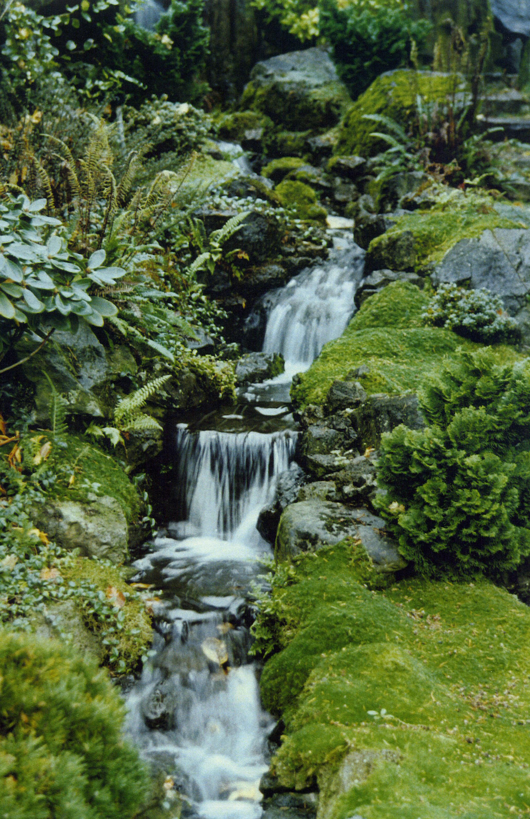 Landscape Management Water Saving Tips
