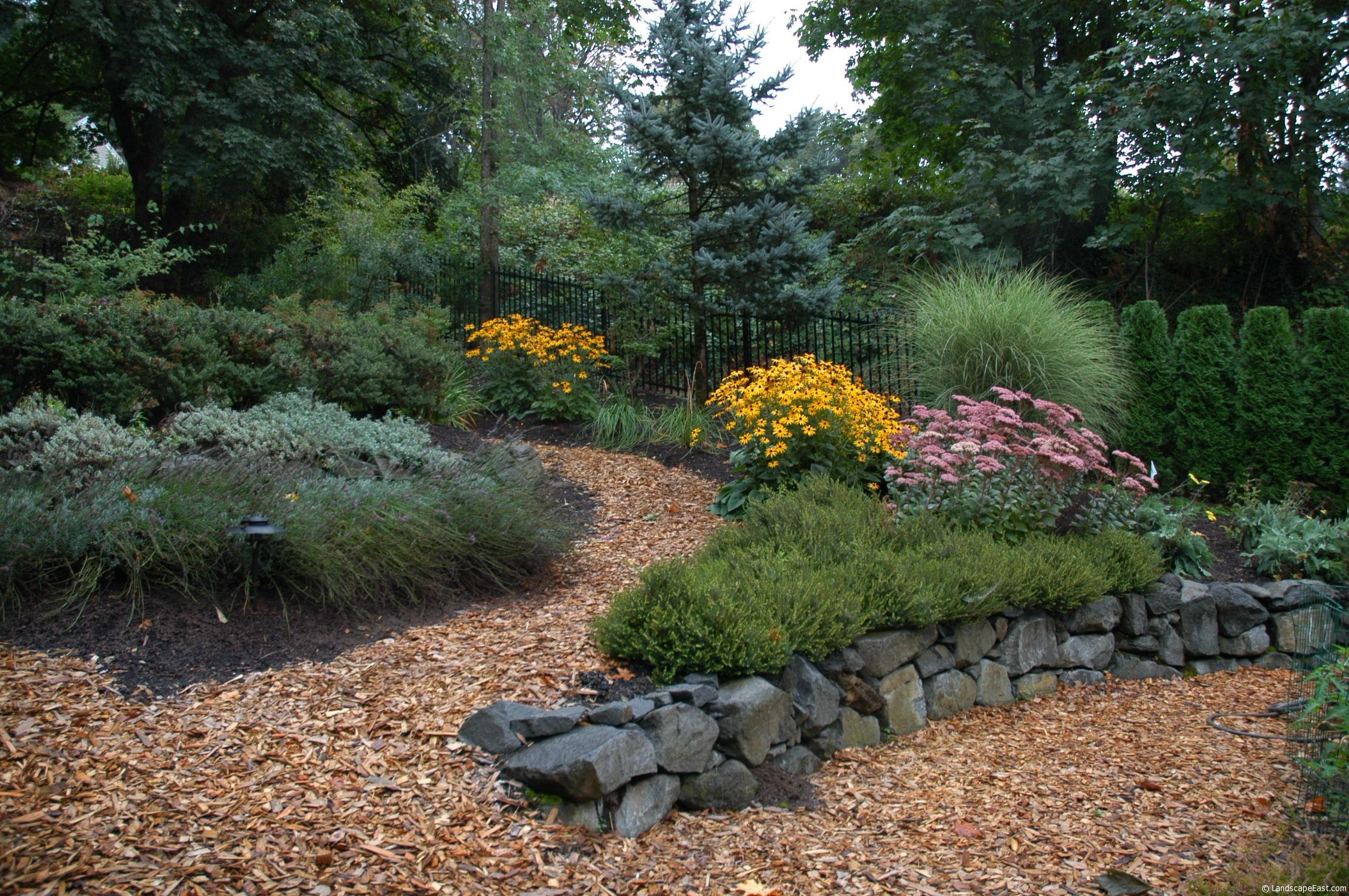 Backyard Landscape Designs for Winter Entertaining on Low Maintenance Backyard Design  id=88537