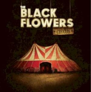 the-black-flowers-circus