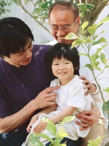 松阪市の固定資産税を知ろう!計算方法と減税も簡単に解説!