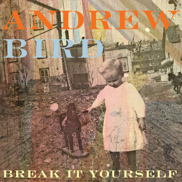 break it yourself cover
