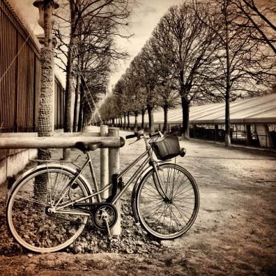 Bicycle in Jardin des Tuileries