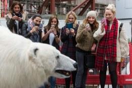 Polar_Bear_Afternoon-29
