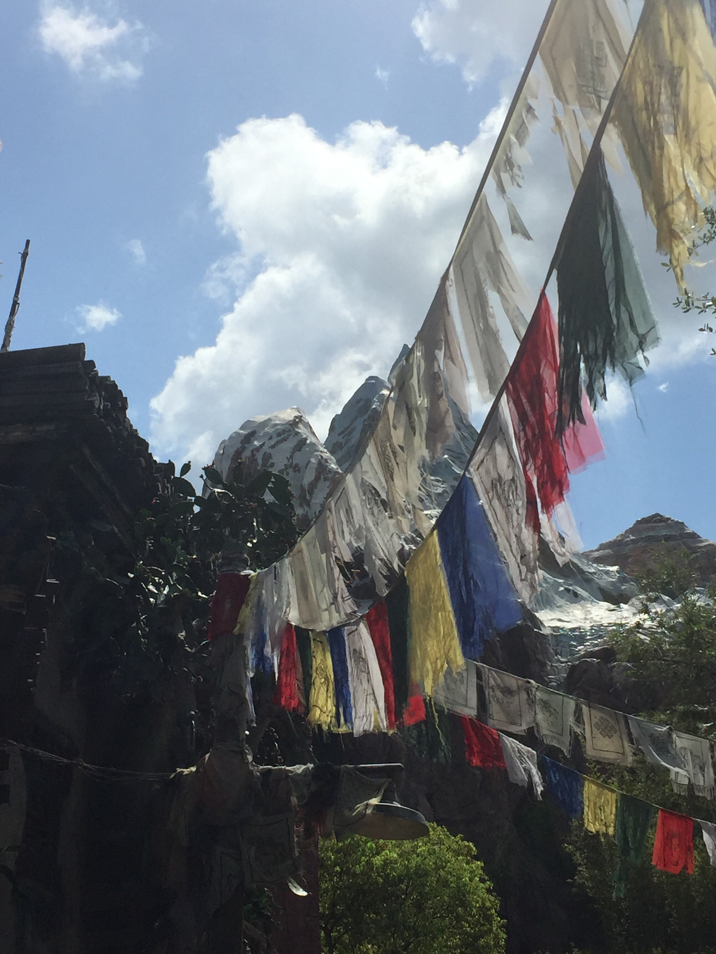 Everest View from Animal Kingdom