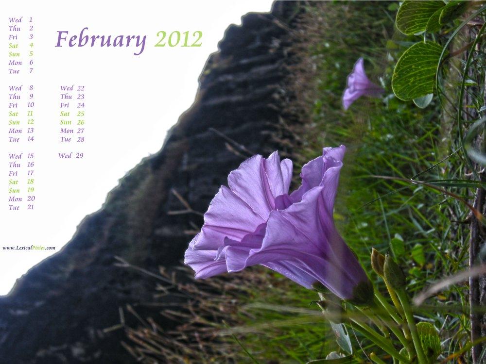February 2012 Nature Desktop Wallpaper