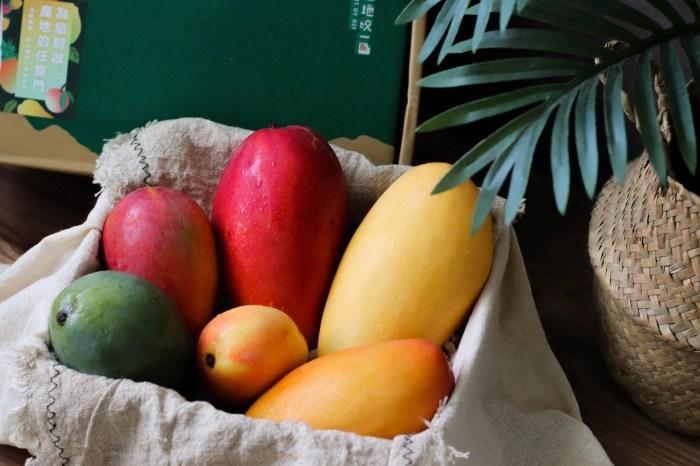 芒果禮盒推薦 產地咬一口芒果小吉盒,一盒吃到六種品種的芒果!