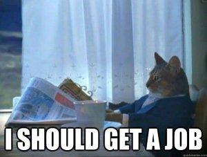 job hunt3