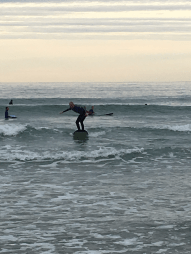 surfing four