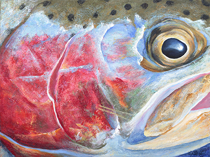 Acrlic painting of the gill plates of a rainbow trout head